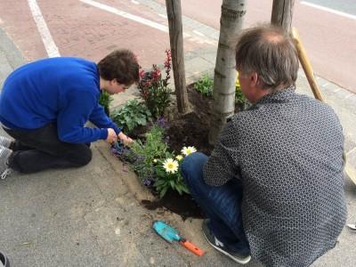 Fleurige boomspiegels in Den Haag